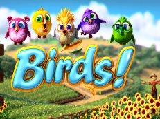 birds - Birds