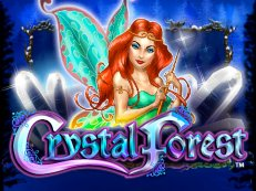 crystal forest2 - The Wild Chase